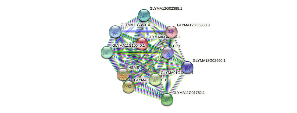 GLYMA06G04065.1 protein (Glycine max) - STRING interaction network
