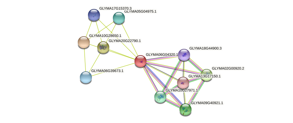 GLYMA06G04320.1 protein (Glycine max) - STRING interaction network