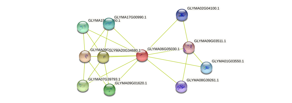 GLYMA06G05030.1 protein (Glycine max) - STRING interaction network