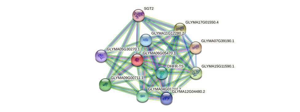 GLYMA06G05470.1 protein (Glycine max) - STRING interaction network