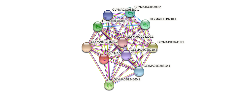 GLYMA06G05810.1 protein (Glycine max) - STRING interaction network