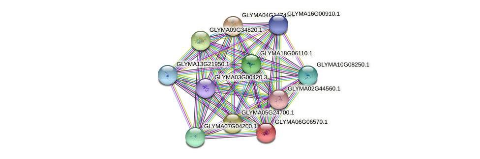 GLYMA06G06570.1 protein (Glycine max) - STRING interaction network