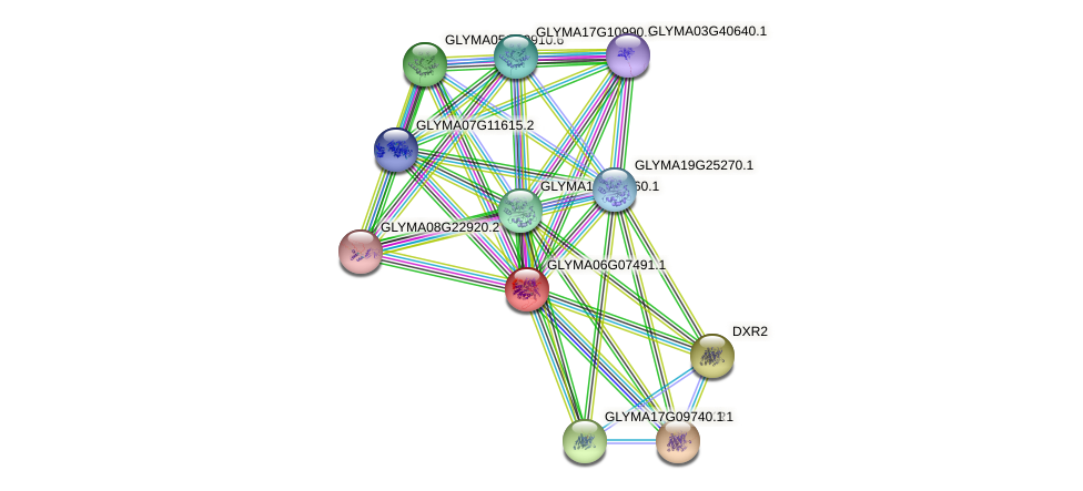 GLYMA06G07491.1 protein (Glycine max) - STRING interaction network