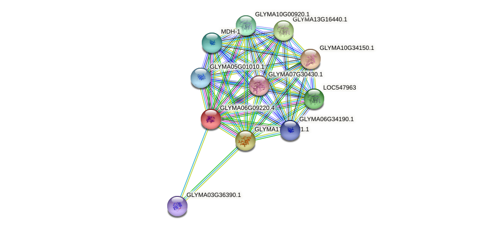 GLYMA06G09220.4 protein (Glycine max) - STRING interaction network