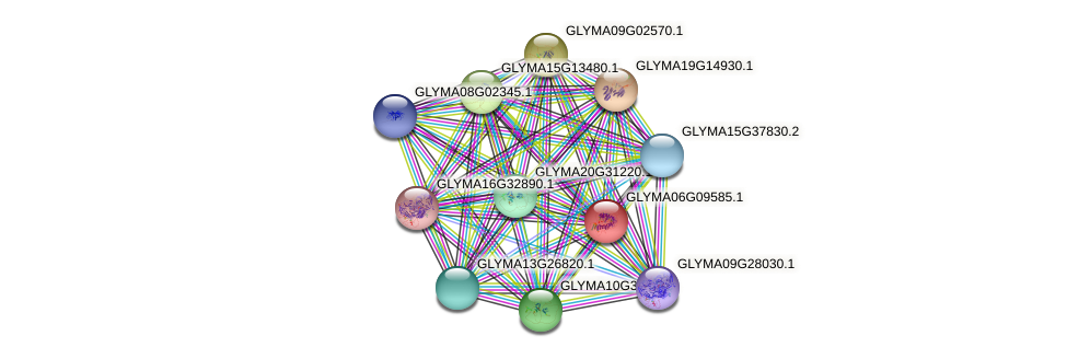 GLYMA06G09585.1 protein (Glycine max) - STRING interaction network