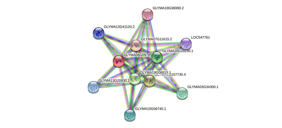 GLYMA06G09785.1 protein (Glycine max) - STRING interaction network