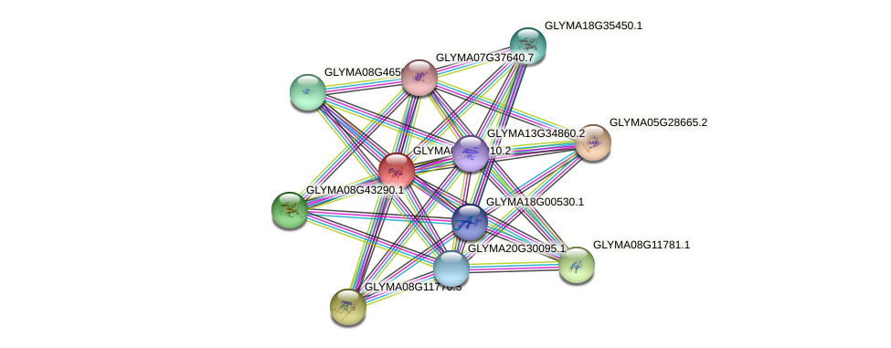 GLYMA06G10010.2 protein (Glycine max) - STRING interaction network