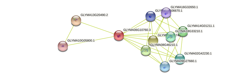 GLYMA06G10760.1 protein (Glycine max) - STRING interaction network