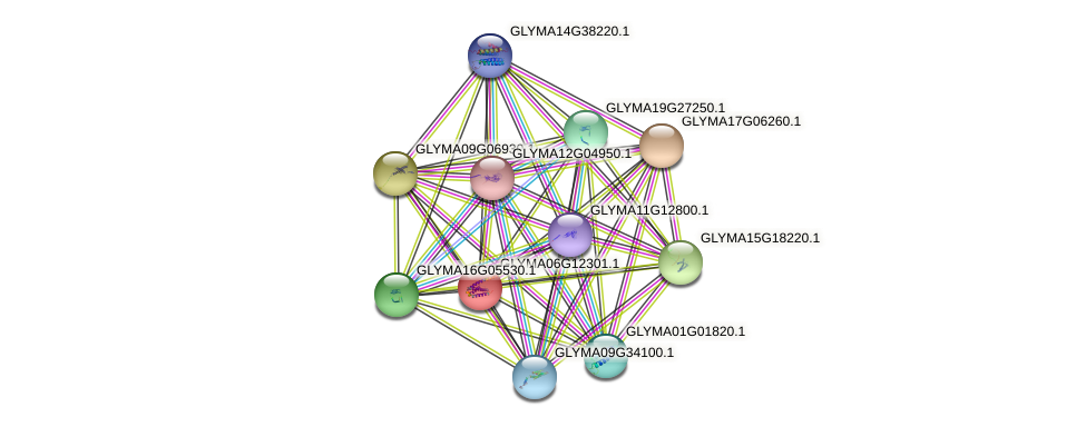 GLYMA06G12301.1 protein (Glycine max) - STRING interaction network