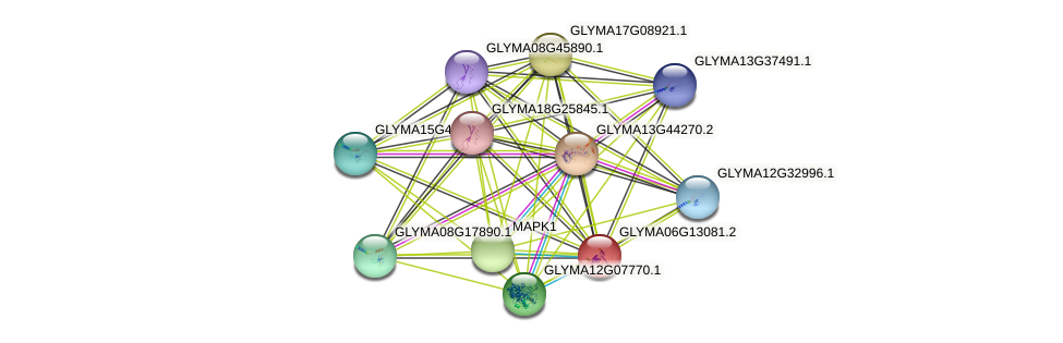 GLYMA06G13081.1 protein (Glycine max) - STRING interaction network