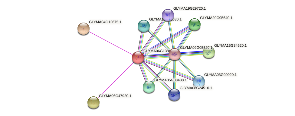 GLYMA06G13840.5 protein (Glycine max) - STRING interaction network