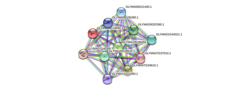 GLYMA06G14690.1 protein (Glycine max) - STRING interaction network