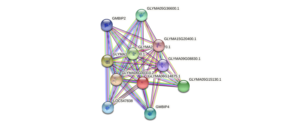 GLYMA06G14875.1 protein (Glycine max) - STRING interaction network