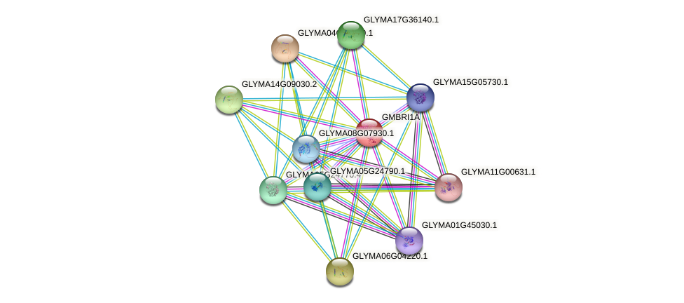 GLYMA06G15270.1 protein (Glycine max) - STRING interaction network