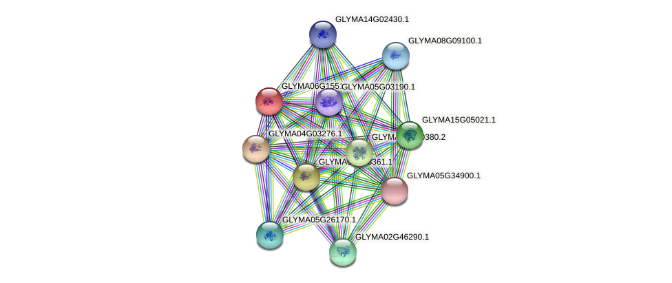 GLYMA06G15510.1 protein (Glycine max) - STRING interaction network