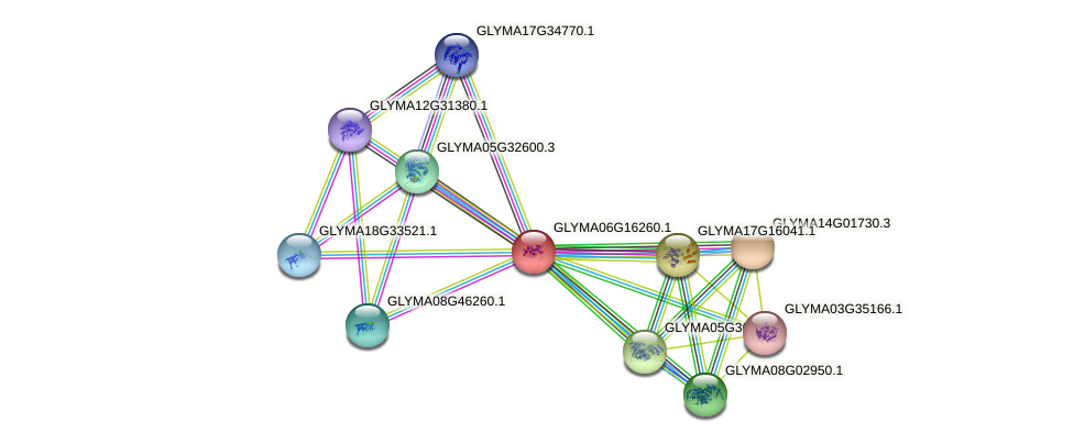 GLYMA06G16260.1 protein (Glycine max) - STRING interaction network