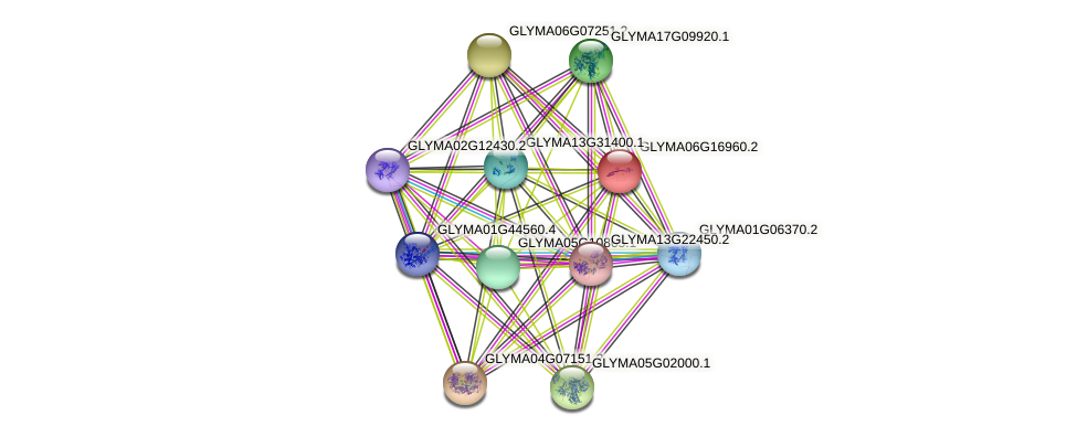 GLYMA06G16960.2 protein (Glycine max) - STRING interaction network