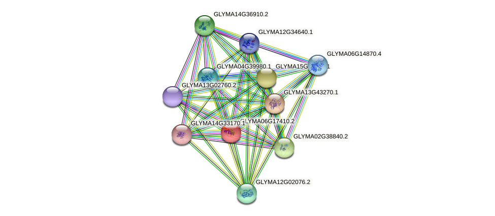 GLYMA06G17410.2 protein (Glycine max) - STRING interaction network