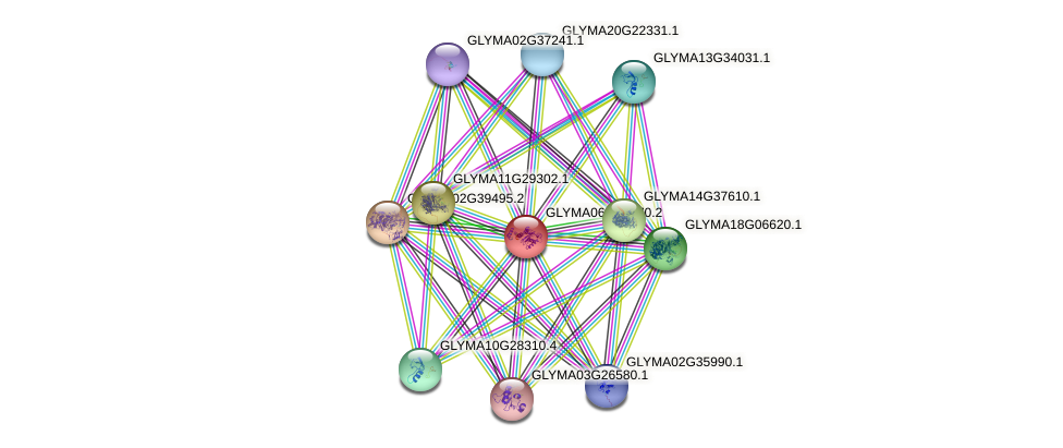 GLYMA06G17470.2 protein (Glycine max) - STRING interaction network