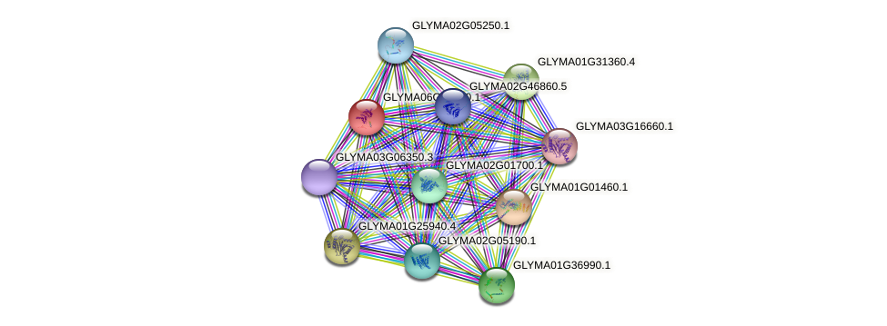 GLYMA06G17960.1 protein (Glycine max) - STRING interaction network