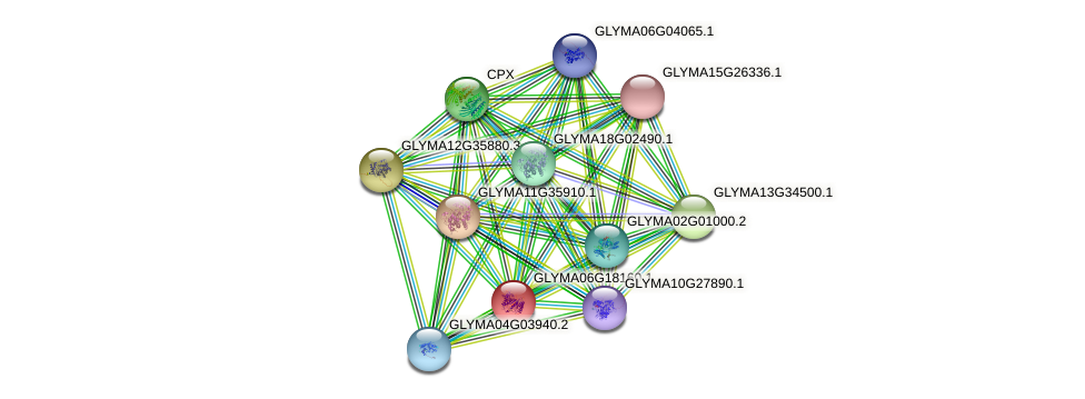 GLYMA06G18160.1 protein (Glycine max) - STRING interaction network