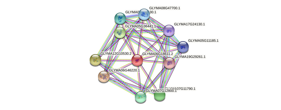 GLYMA06G18611.1 protein (Glycine max) - STRING interaction network