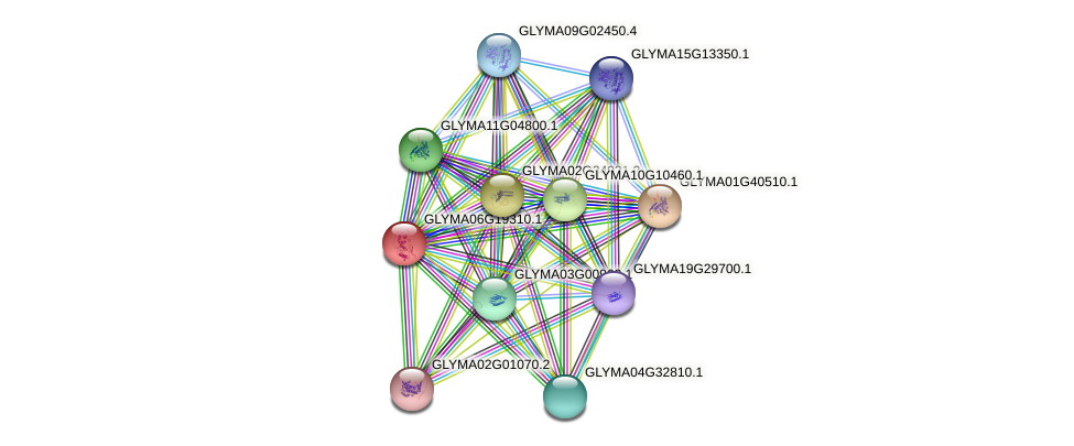 GLYMA06G19310.1 protein (Glycine max) - STRING interaction network