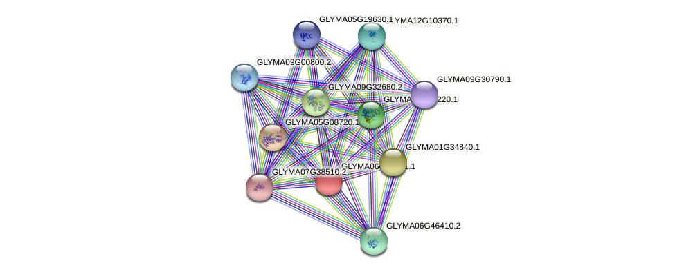 GLYMA06G19441.1 protein (Glycine max) - STRING interaction network
