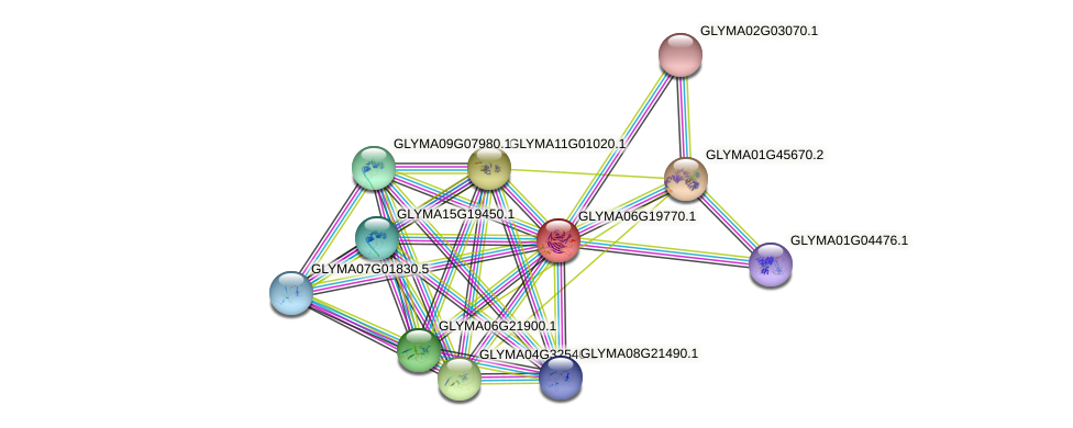 GLYMA06G19770.1 protein (Glycine max) - STRING interaction network