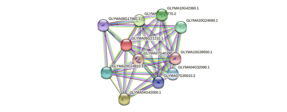 GLYMA06G21210.1 protein (Glycine max) - STRING interaction network