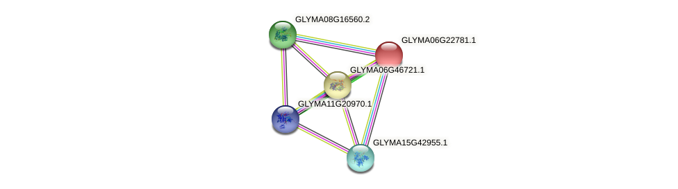 GLYMA06G22781.1 protein (Glycine max) - STRING interaction network