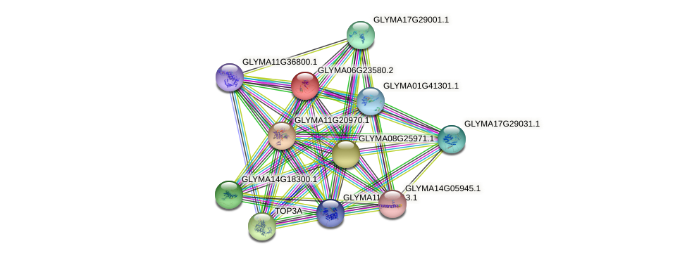 GLYMA06G23580.2 protein (Glycine max) - STRING interaction network