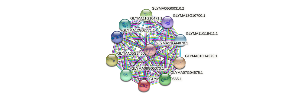 GLYMA06G29565.1 protein (Glycine max) - STRING interaction network