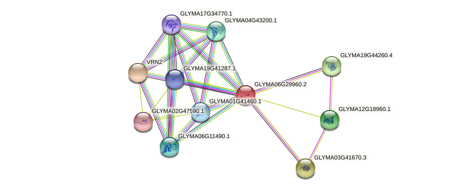 GLYMA06G29960.2 protein (Glycine max) - STRING interaction network