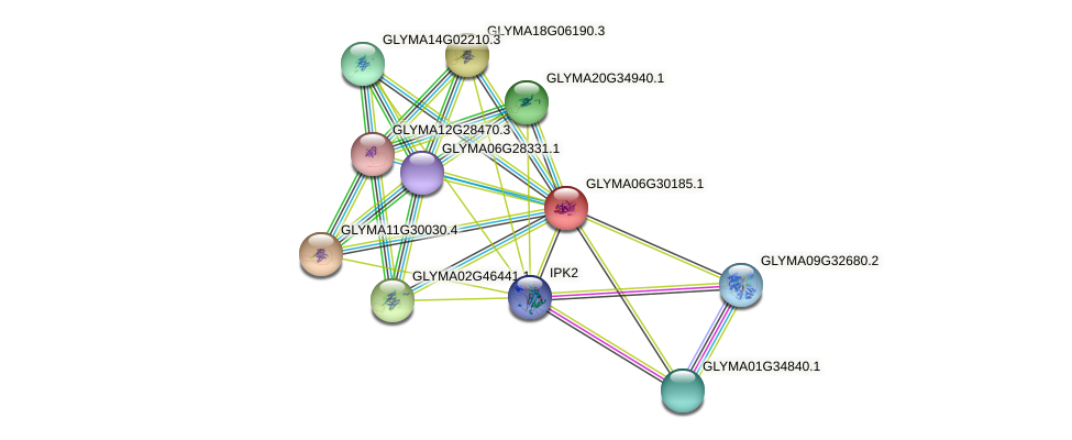 GLYMA06G30185.1 protein (Glycine max) - STRING interaction network
