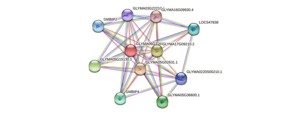 GLYMA06G31606.1 protein (Glycine max) - STRING interaction network