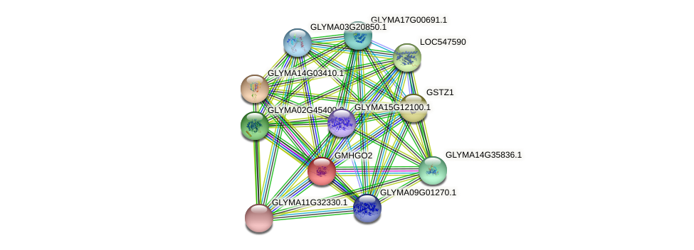 GLYMA06G34940.1 protein (Glycine max) - STRING interaction network