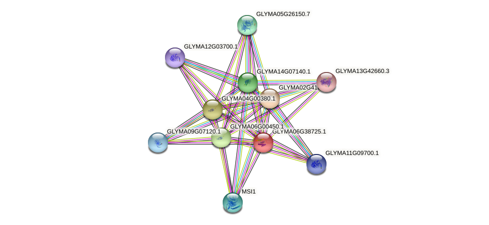 GLYMA06G38725.1 protein (Glycine max) - STRING interaction network