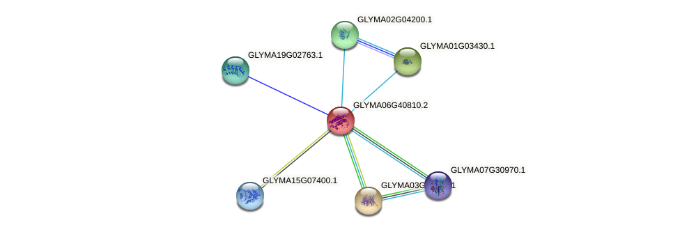 GLYMA06G40810.2 protein (Glycine max) - STRING interaction network