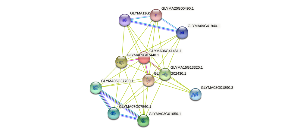 GLYMA06G41461.1 protein (Glycine max) - STRING interaction network