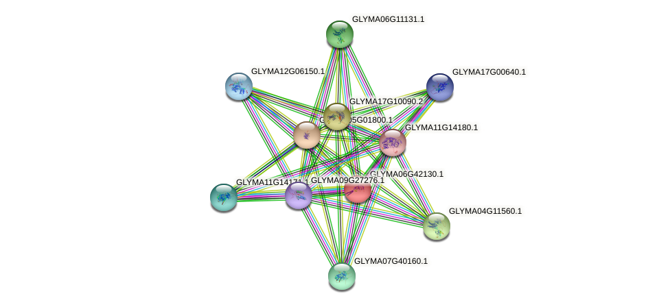 GLYMA06G42130.1 protein (Glycine max) - STRING interaction network