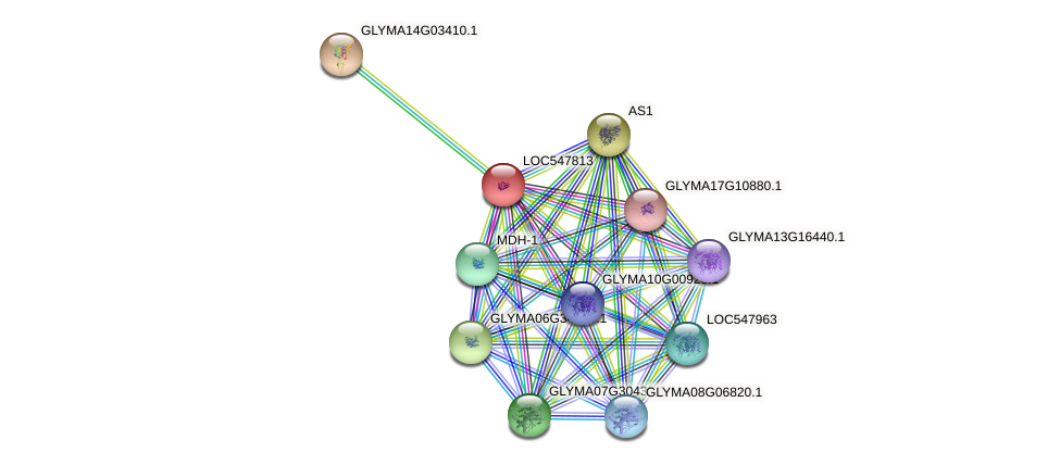 LOC547813 protein (Glycine max) - STRING interaction network