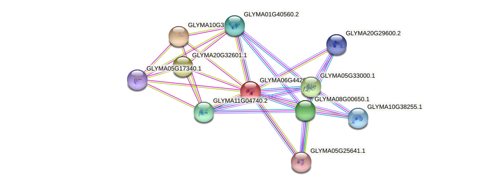 GLYMA06G44260.1 protein (Glycine max) - STRING interaction network