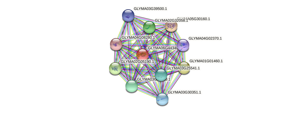 GLYMA06G44340.1 protein (Glycine max) - STRING interaction network