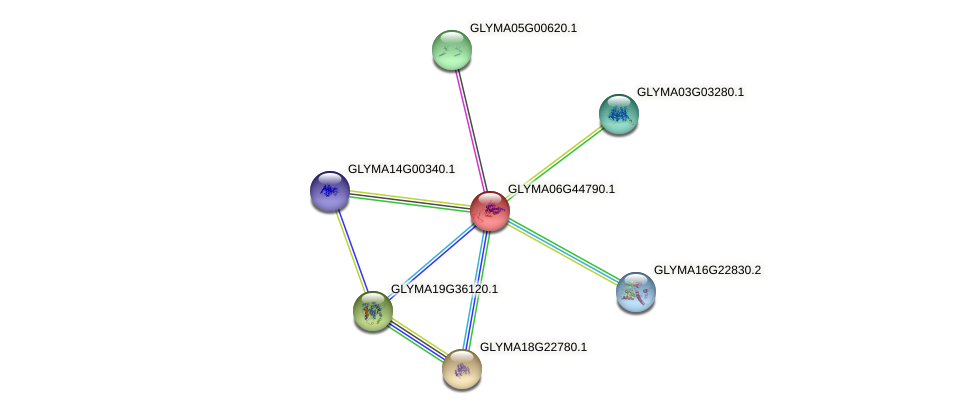 GLYMA06G44790.1 protein (Glycine max) - STRING interaction network