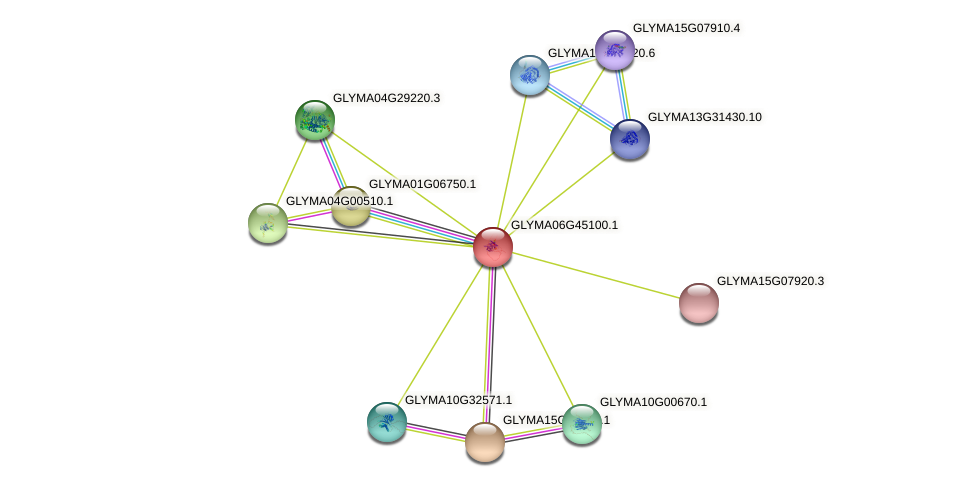 GLYMA06G45100.1 protein (Glycine max) - STRING interaction network