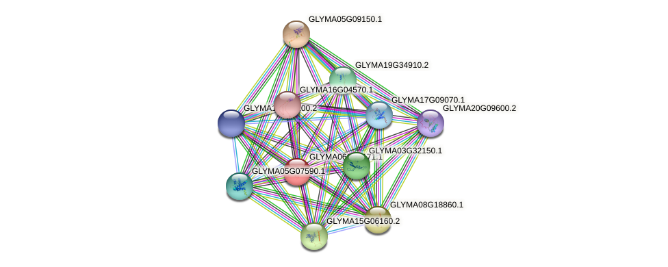 GLYMA06G45171.1 protein (Glycine max) - STRING interaction network