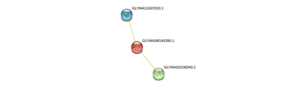 GLYMA06G45390.1 protein (Glycine max) - STRING interaction network