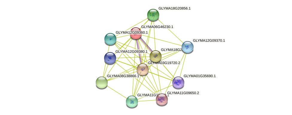 GLYMA06G46230.1 protein (Glycine max) - STRING interaction network