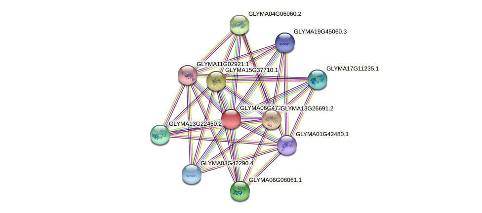 GLYMA06G47230.1 protein (Glycine max) - STRING interaction network